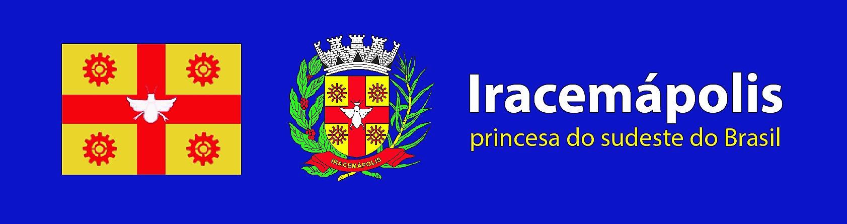 Bandeira e brasão oficiais